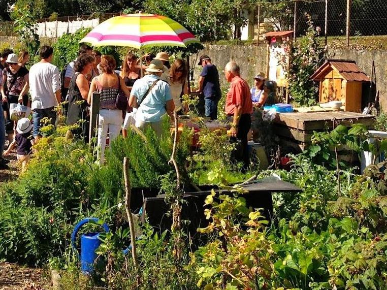 «L'agriculture urbaine prend son essor, poussant les villes à réinventer nos manières de cohabiter»