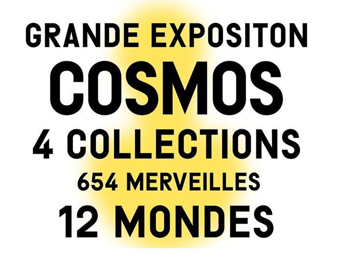 Exposition COSMOS