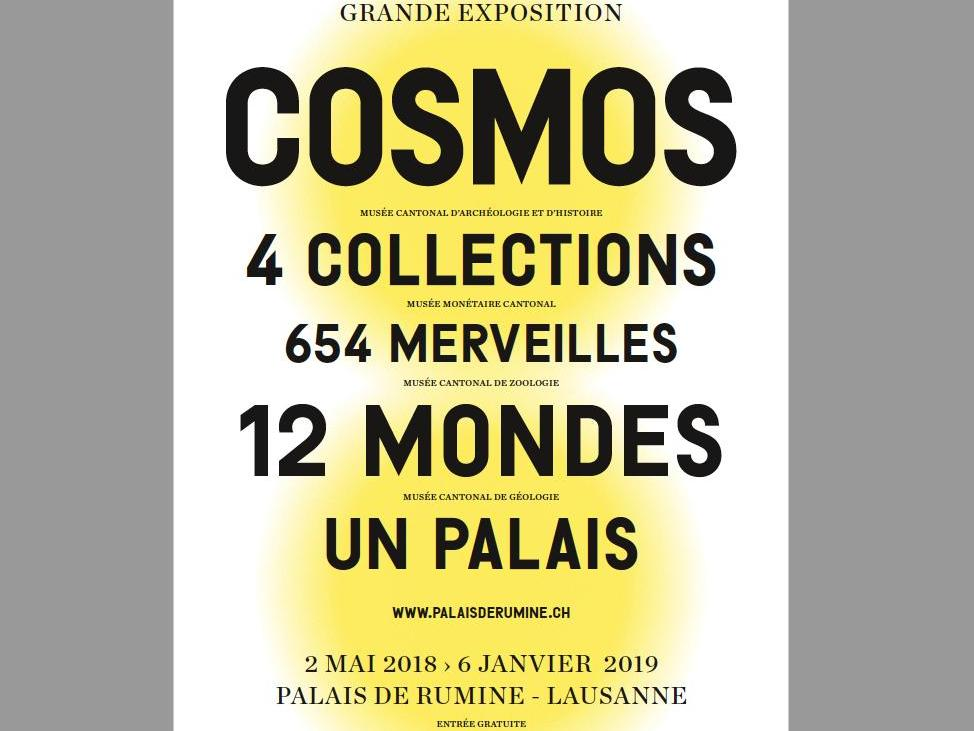 Intervention de Francesco Panese au vernissage COSMOS