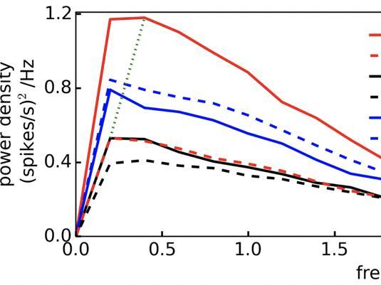ln vitro Cortical Network Firing is Homeostatically Regulated : A Model for Sleep Regulation