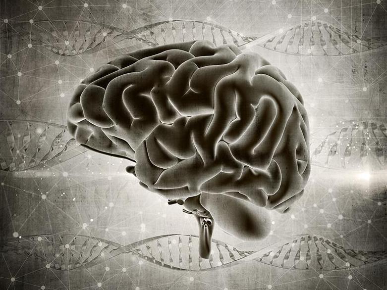 Risques génétiques et maladies neuropsychiatriques