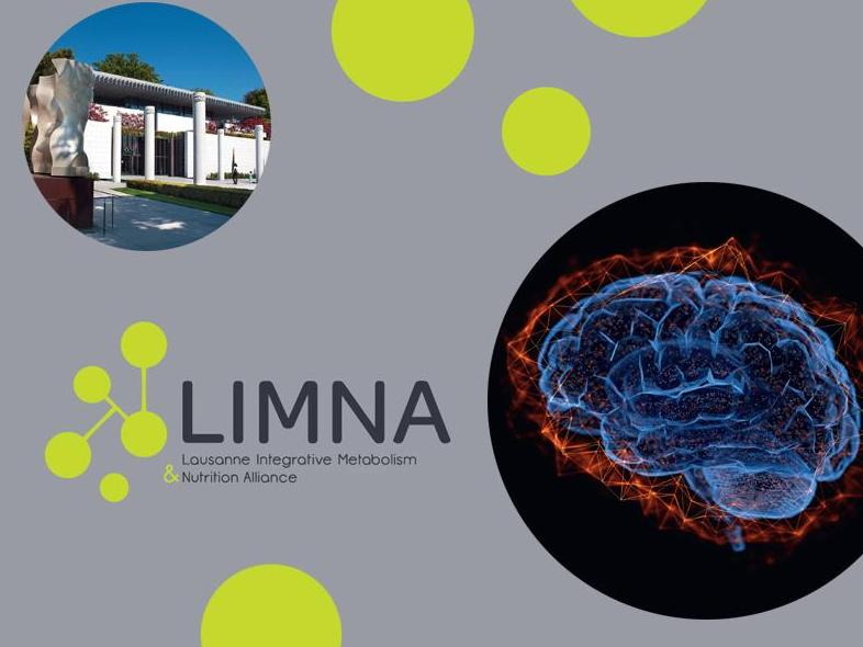 LIMNA Symposium: Central Regulation of Metabolism and Feeding