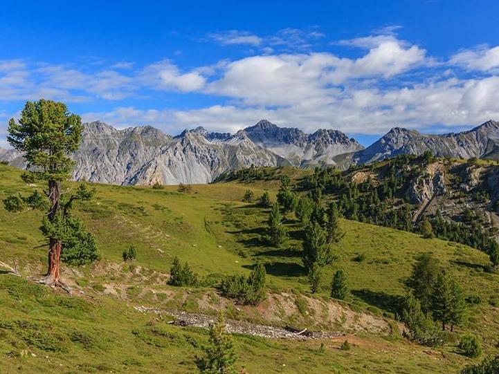Propositions de projets de recherche sur les Parcs Suisses