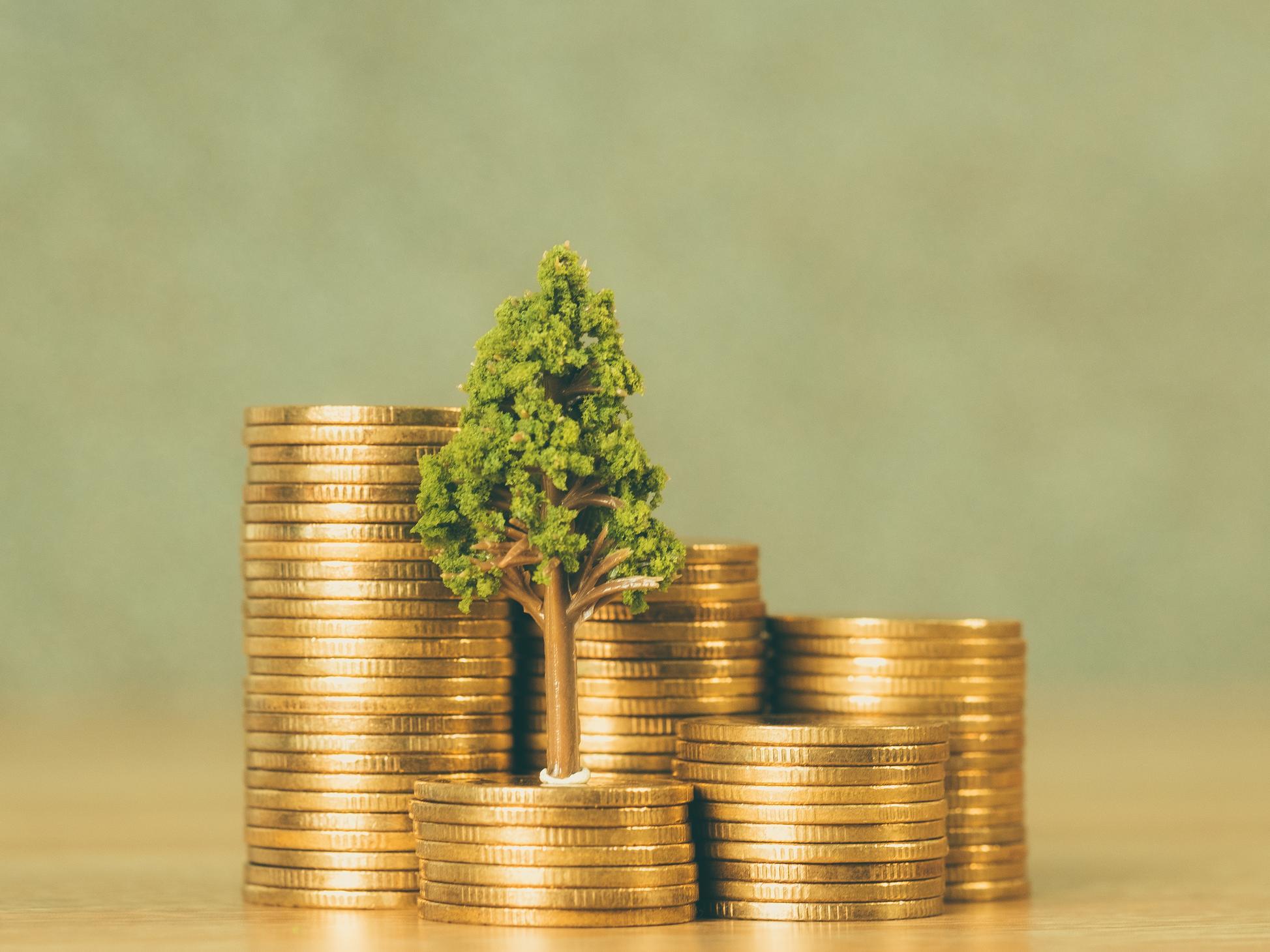 Investissement socialement responsable: quel potentiel de rentabilité par rapport à une stratégie d'investissement traditionnelle?