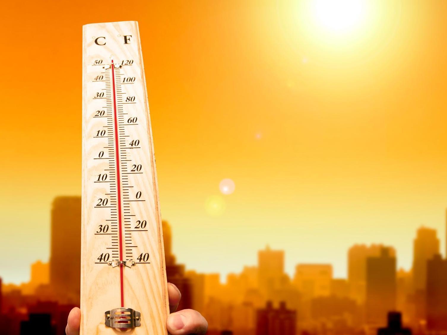Ilots de chaleur, le combat des villes