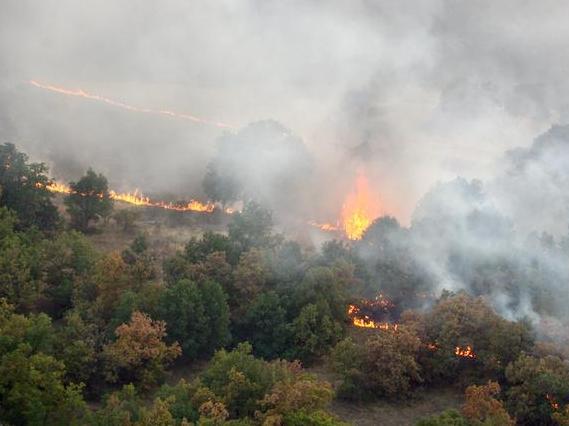 Les feux en Amazonie et ailleurs