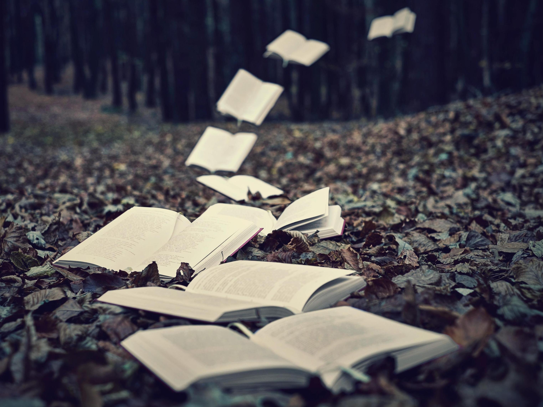 Suite au prochain épisode: des séries littéraires à Game of Thrones