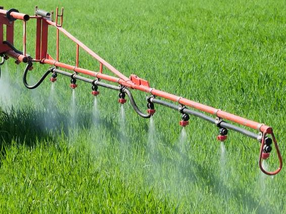 Water Quality Standards and Pesticides